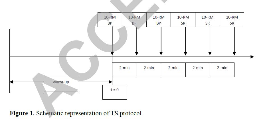 TS Protokoll