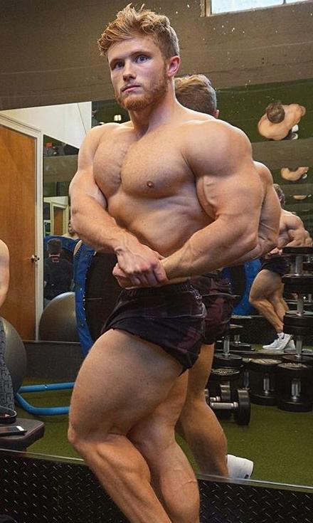 Natürliche Bodybuilding-Volumendiät